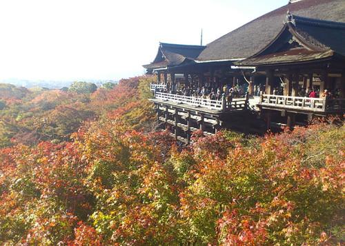 社員旅行 IN京都